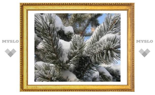 26 декабря: Узнай погоду в Туле на весь 2009 год