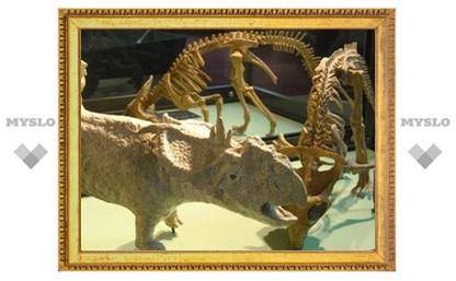 В Туле пройдет выставка останков доисторических животных нашего края