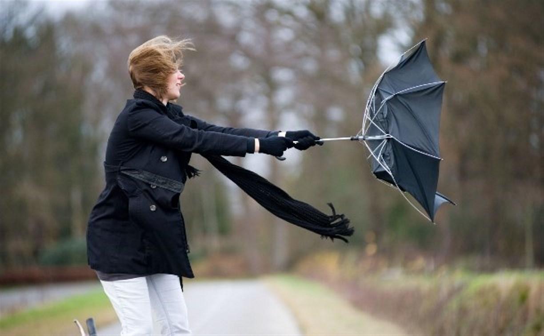 Погода в Туле 16 октября: дождь и сильный ветер