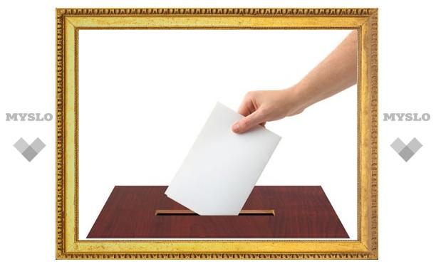 Выборы в Узловой: на 15.00 явка избирателей составила 18,7%