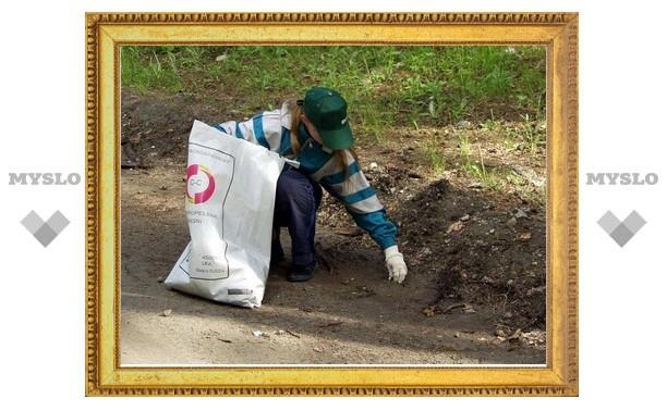 В Туле объявлен набор в «Зеленый десант»