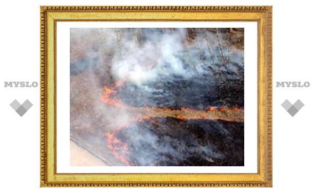 В Туле - пик пожароопасности