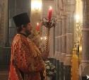 Пасхальные богослужения в тульских храмах пройдут без прихожан