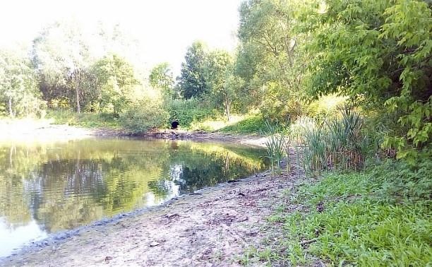 Администрация Тулы: очистка пруда в Менделеевском проводится постоянно