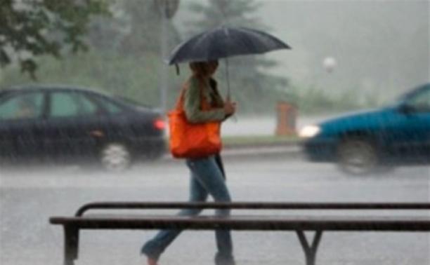 МЧС: В Туле и области ожидаются грозы и сильный ветер