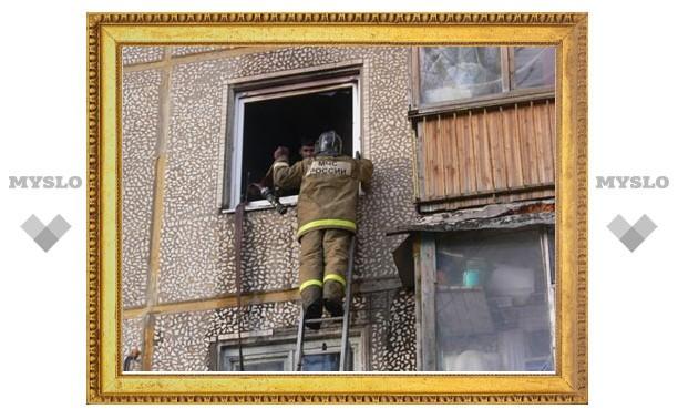В Туле пожарные спасли четырех взрослых и одного ребенка