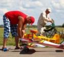 Туляков приглашают на ежегодный фестиваль авиамоделизма
