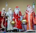 В Центральном парке состоится «Битва Дедов Морозов»