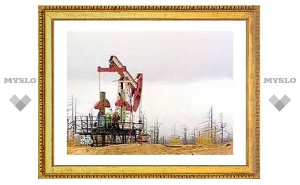Роснедра пообещали в 2007 году раздать 300 нефтегазовых лицензий