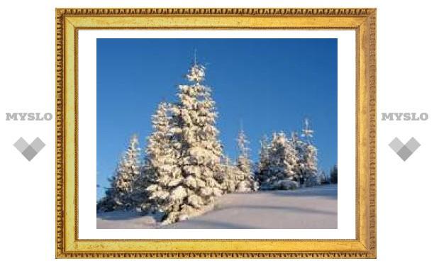 В Туле сегодня мороз и солнце