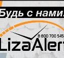 Отряд «Лиза Алерт» разработал приложение для быстрого оповещения о поисках пропавших людей