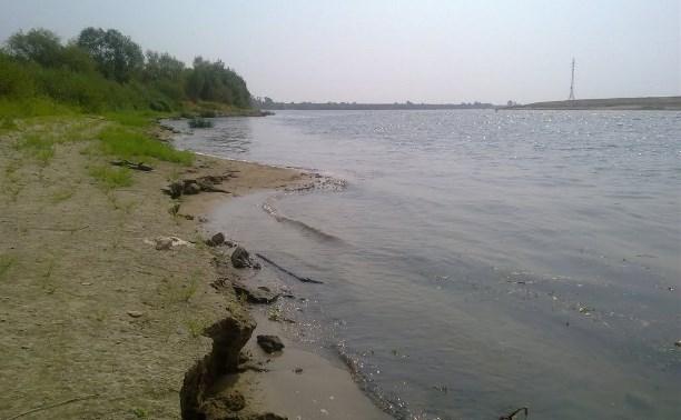 Из Оки в Тульской области незаконно добывали песок: работу фирмы остановил суд