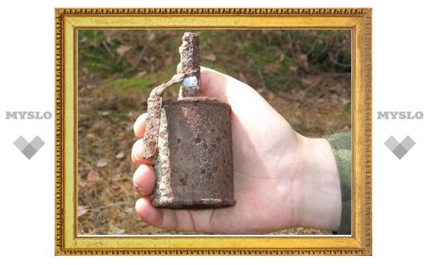 В Туле нашли три гранаты времен ВОВ