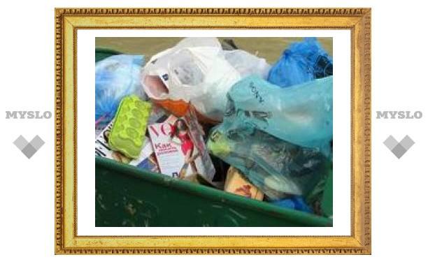 В Туле установят мусорные бачки