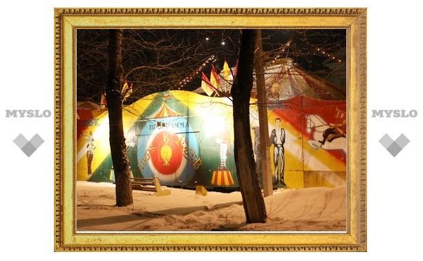 В Новомосковске «зажег» бродячий цирк