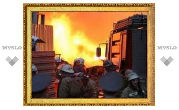 В поселке Куркино дети сожгли свой дом