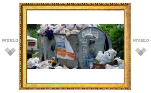 Тула погрязла в мусоре