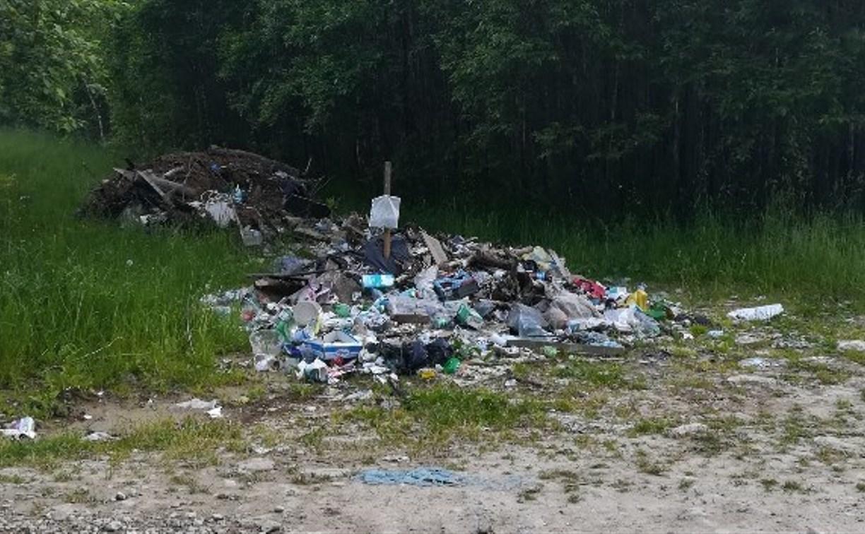 После статьи на Myslo прокуратура потребовала ликвидировать свалку у деревни Поповкино в Туле