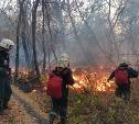 100 туляков тушат лесные пожары под Воронежем