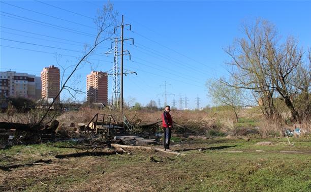 Ручей в березовой роще завалили спиленными деревьями