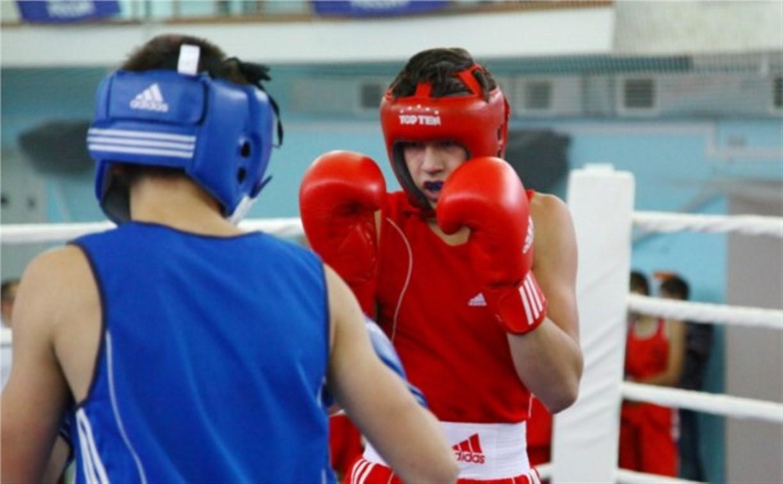 В Туле пройдет Всероссийский турнир по боксу памяти Жабарова
