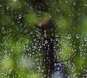 Погода в Туле 21 июля: дожди с грозами, до +24 и переменная облачность