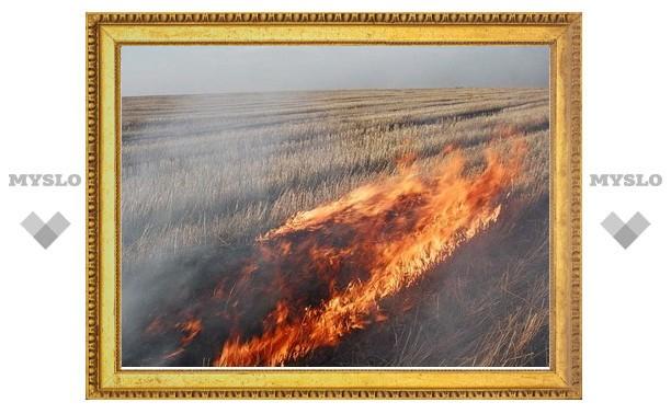 В двух километрах от тульской деревни горит поле
