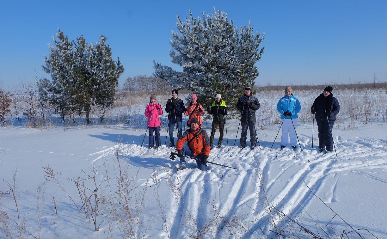 На Куликовом поле будут проходить лыжные экскурсии