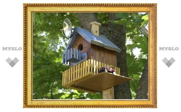 Внимание, акция! Подари птицам скворечник!