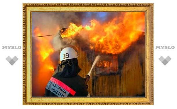 Четверо туляков сами виноваты в своей гибели на пожаре