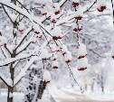 В выходные в Туле снегопад продолжался 11,5 часов