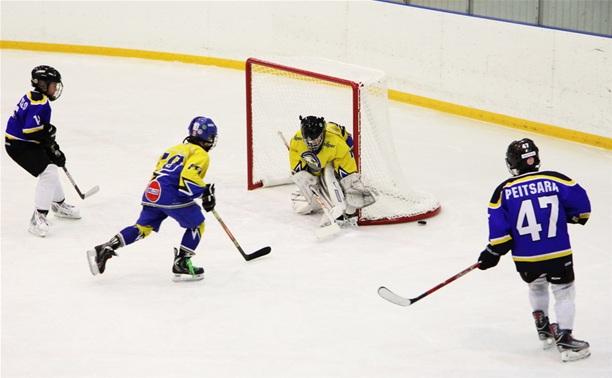 Детский хоккейный турнир в Новомосковске откроют звёзды советского хоккея