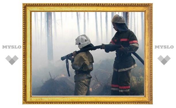 """""""Поля под Волово не горят!"""" - МЧС"""