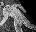 В Туле водитель сбил пешехода и скрылся