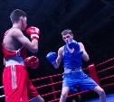 Тульские боксеры завоевали 11 медалей на Всероссийском турнире