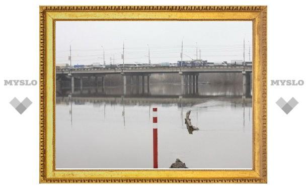 Тульское МЧС: пока что уровень воды в Упе в переделах нормы