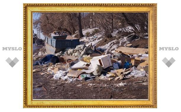Вместе с весной в Тулу приходят тонны мусора