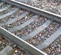 Глухонемой туляк попал под поезд в Подольске