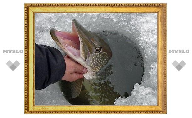 Рыболовство в Тульской области останется бесплатным