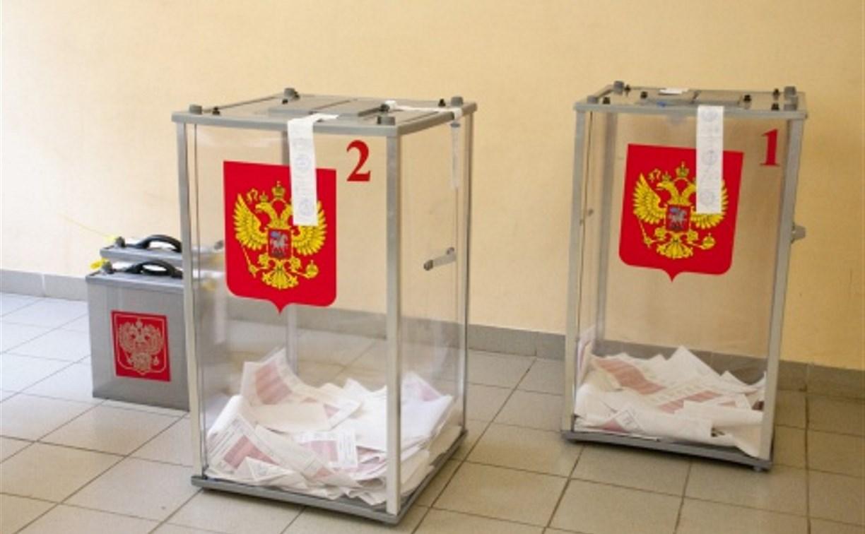 Большая часть студентов Тулы уже проголосовала
