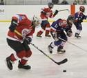 В Новомосковске завершился международный детский хоккейный турнир