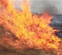 Пожарные продолжают тушить горящие под Тулой поля