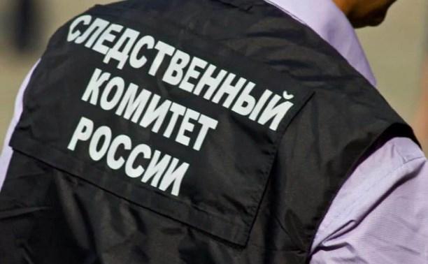 По факту смерти девочки в Щекино возбуждено уголовное дело