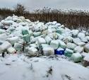 В Туле местная жительница обнаружила незаконную свалку опасных химикатов
