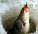 Тульские рыбаки стали лучшими на соревнованиях в Липецке