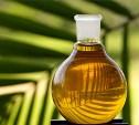 Производителей могут обязать указывать на упаковке наличие в продукции пальмового масла