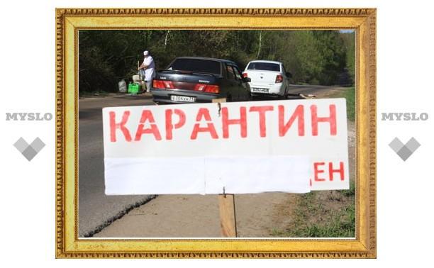 Под Тулой в зоне карантина дезинфицируют автомобили