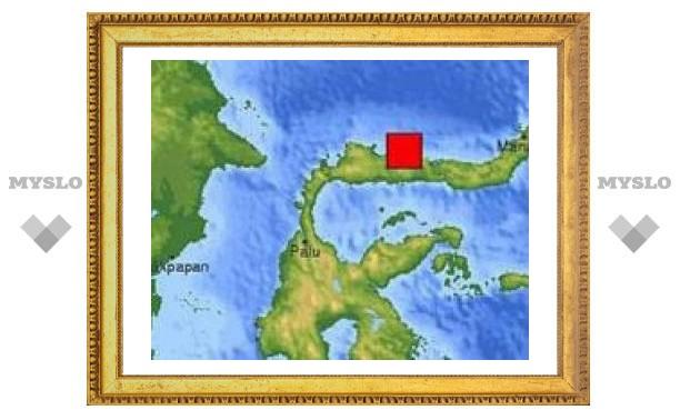 Жертвами землетрясения в Индонезии стали два человека