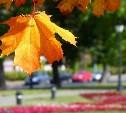 Погода в Туле 8 сентября: до +27 градусов, облачно, умеренный ветер