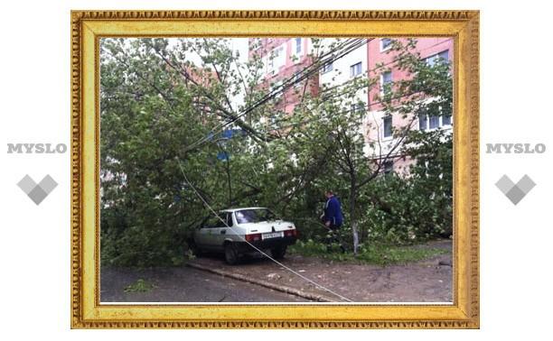 Дерево упало на припаркованную во дворе дома машину